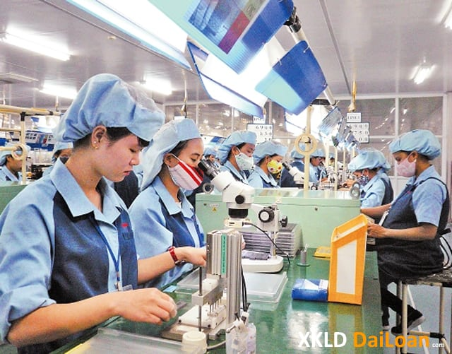 Xuất khẩu lao động Đài Loan đơn hàng tuyển nữ làm màn hình tinh thể lỏng