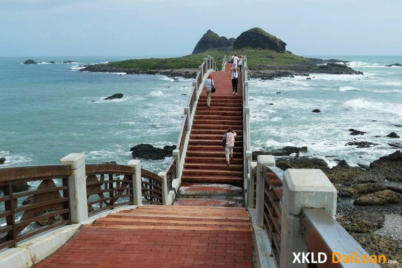 Tổng hợp các đơn hàng HOT đi Đài Loan 2020