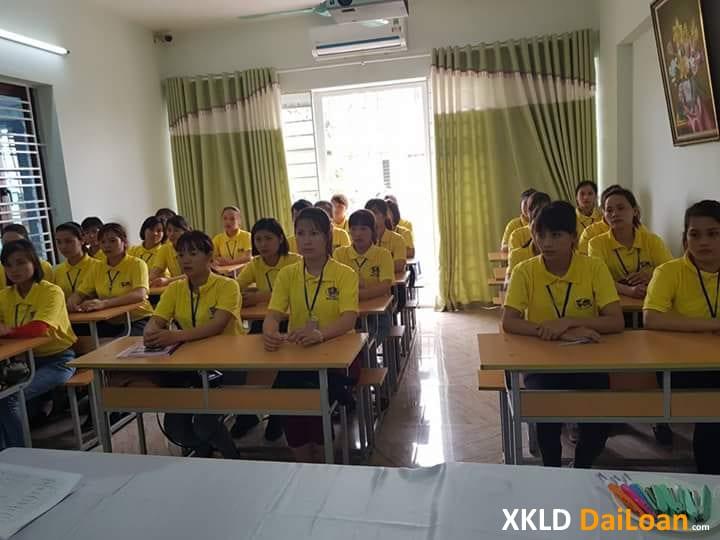 Hình ảnh mới nhất 06 2020 về lao động và đối tác Đài Loan 22